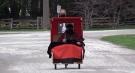 Doris Manley takes a ride in a rickshaw in Bayfield, Ont. on Friday, April 23, 2021. (Scott Miller / CTV News)