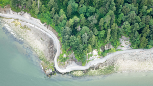 A stretch of the seawall around part of Vancouver's Stanley Park is seen from the air in 2016. (Pete Cline / CTV News Vancouver)
