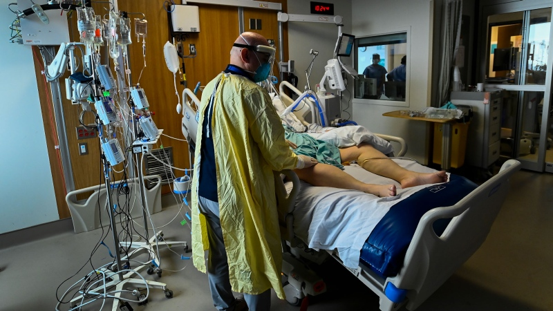 Head intensivist Dr. Ali Ghafouri spends time tending to a 47- year-old woman who has COVID-19 and is intubated on a ventilator in the intensive care unit at the Humber River Hospital during the COVID-19 pandemic in Toronto on Tuesday, April 13, 2021. THE CANADIAN PRESS/Nathan Denette