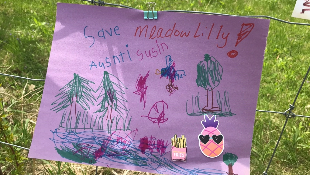 Save Meadowlily sign