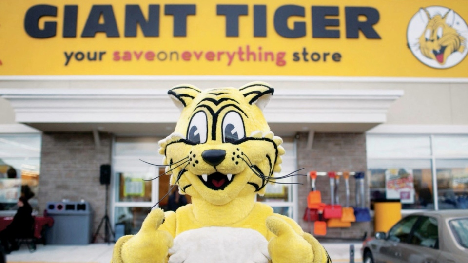 Giant Tiger is celebrating 60 years in business this month. Friendly the Giant Tiger, the store's mascot makes hundreds of appearances at community events. (Image courtesy of Giant Tiger)