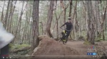 Enthusiasts call for more mountain bike trails