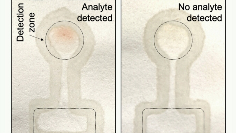 Researchers at the University of Waterloo in Ontario are developing an at-home saliva test for COVID-19 that can be ready in 20 minutes If the paper turns red, that indicates a positive test. (University of Waterloo)
