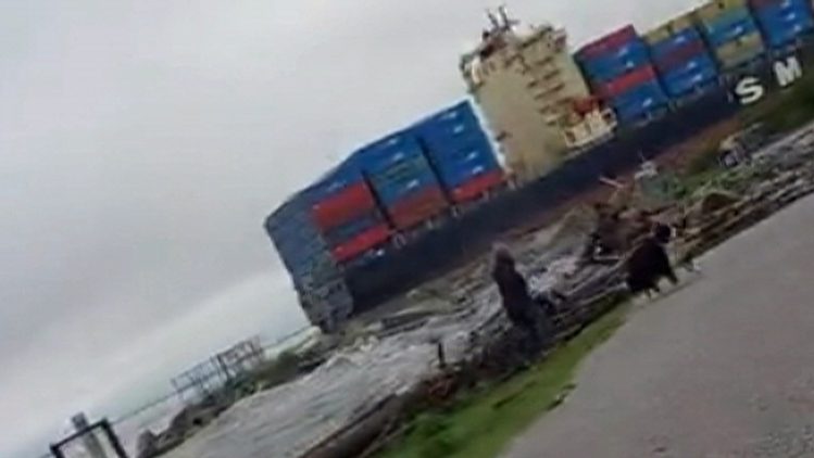 Huge wave from cargo ship swamps pedestrian path