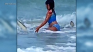 A narrow shark escape