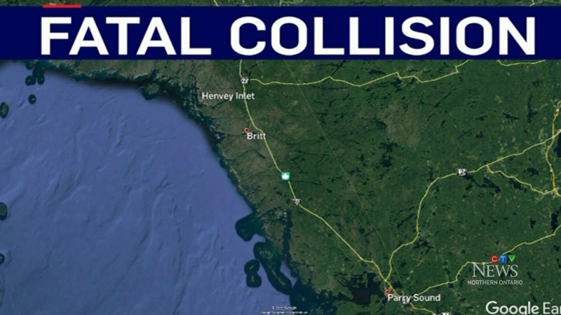Sudbury woman killed in collision with moose