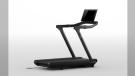 An image of the Peloton TR02 model treadmill (Health Canada)