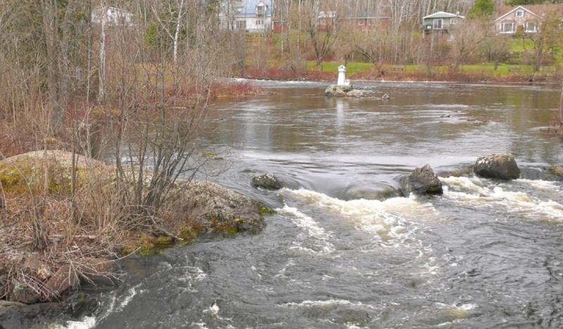 The picturesque Blanche Rivercontains mighty rapids that are currently swollen with spring runoff, creating an unrelenting current. (Lydia Chubak/CTV News)
