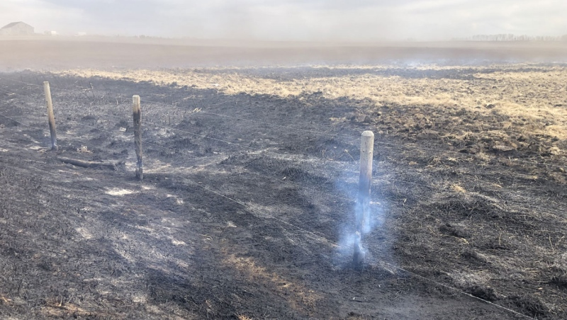 A large fire burned a section of land near the community of Conrich on Thursday.