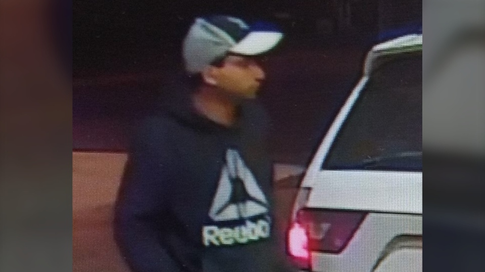 Suspect in vehicle theft