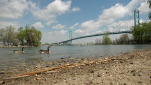 The Ambassador Bridge from the banks of the Detroit River at Chewitt Park in Windsor, Ont. on May 7, 2021. (Rich Garton/CTV Windsor)