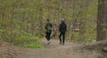 Walking through Kitchener's Monarch Woods
