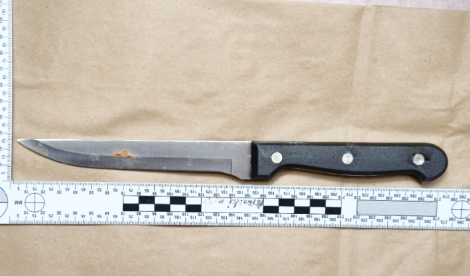 Sault knife