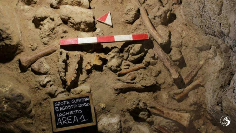 All the fossil remains found in the Guattari Cave are thought to be of adults. (AFP)
