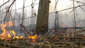 Tomahawk wildfire