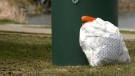 Community trail clean-up in Timmins