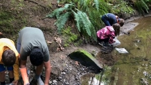 Vancouver Island students clean up creek