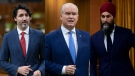Justin Trudeau, Erin O'Toole and Jagmeet Singh rise in the House of Commons. THE CANADIAN PRESS/Adrian Wyld, Sean Kilpatrick