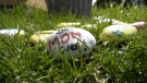 Kelly Cerenzia has painted over 200 rocks, each with Mother's Day messaging on them and placing them around Sault Ste. Marie for people to pickup. May 8/21 (Christian D'Avino/CTV News Northern Ontario)
