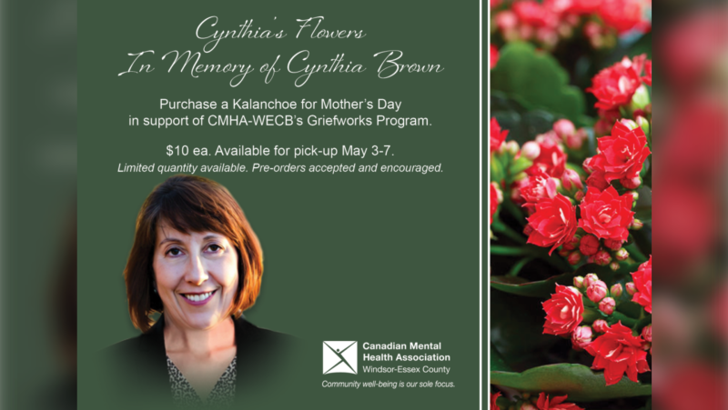 Cynthia's Flowers, in memory of Cynthia Brown raised over $5,000 (Source: Canadian Mental Health Association, Windsor-Essex County)