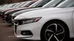 Unsold 2020 Accord sedans at a Honda dealership in Littleton, Colo., on Oct. 20, 2019. (David Zalubowski / AP)