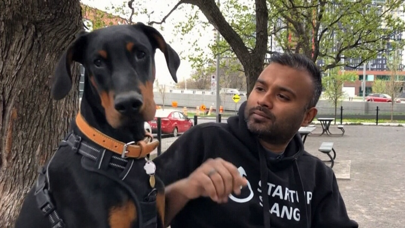Montrealer denied apartment over therapy dog