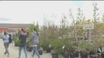 Garden centres busy amid provincial lockdown