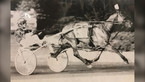 My favourite photo of Sammy: all four of his legs off the ground, flying. May 31, 2009, with Canadian Horse Racing hall-of-famer Ron Waples driving. (Photo: Jayson Baxter)