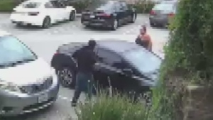 Calif. woman punches, chases would-be car thief