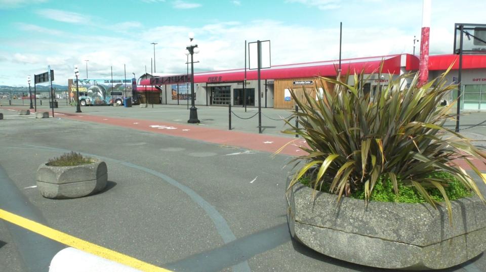 ogden point cruise ship terminal