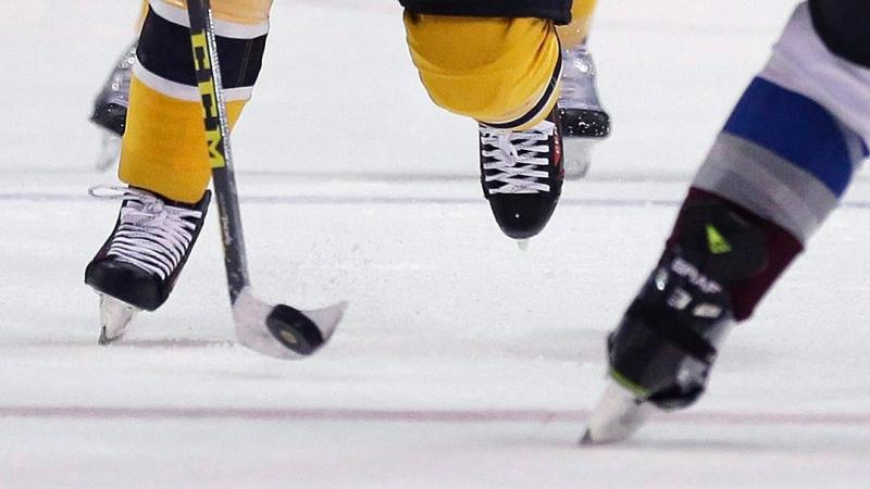 Hockey generic