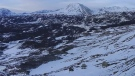 Timelapse footage shared by Denali National Park shows the Muldrow Glacier 'surging' for the first time in 64 years.