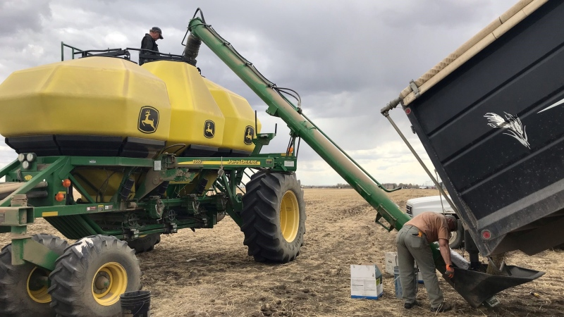 Seeding is underway at IXL Farms Inc. near Moose Jaw, on May 13, 2021. (Stefanie Davis/CTV News)