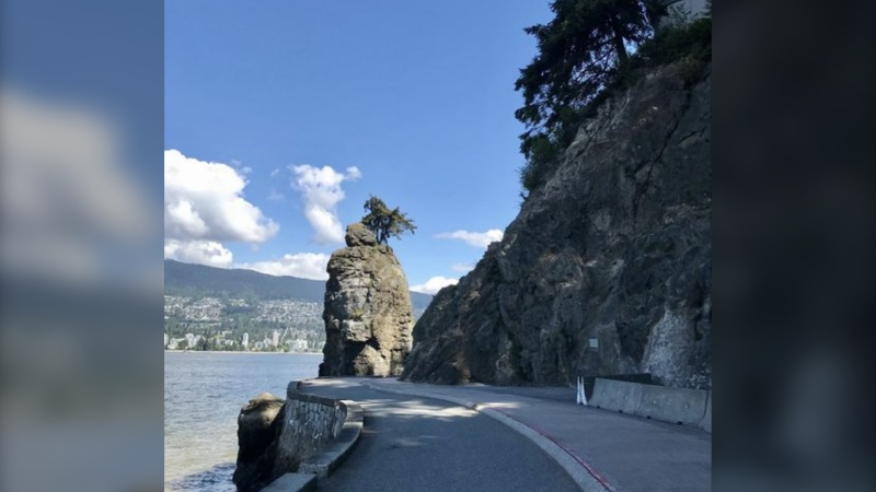 A photo from the B.C. Conservation Officer Service shows the approximate location of a coyote attack in Vancouver's Stanley Park on Thursday, May 13, 2021.