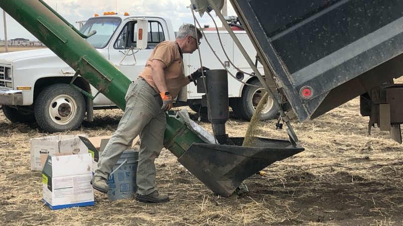 Seeding is underway at IXL Farms Inc. near Moose Jaw, on May 13, 2021. (Mackenzie Read/CTV News)