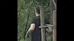 The latest incident was in Byrne Creek Ravine Park on May 5th. Police are continuing to investigate.