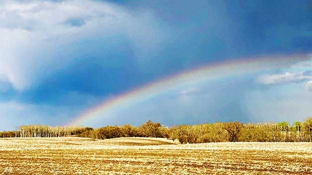 A welcome sight near Neepawa. Photo by Donna Lach.
