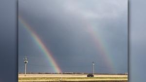Prairie Rainbow. Photo by Tammy Hildebrand.