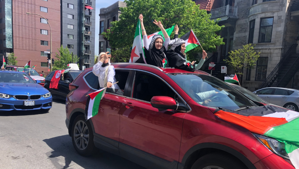 Protesters in support of Palestine