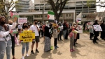 "Attendees at the rally could be heard yelling ""free, free Palestine"" and ""hey hey, hey hey, the occupation has to go."" (Tyler Barrow/CTV News)"