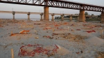 Bodies of suspected COVID-19 victims are seen in shallow graves buried in the sand near a cremation ground on the banks of Ganges River in Prayagraj, India, Saturday, May 15, 2021. (AP Photo/Rajesh Kumar Singh)