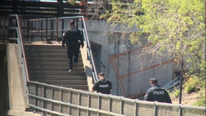 Ottawa police search Hog's Back Falls for a man reported missing on Saturday.