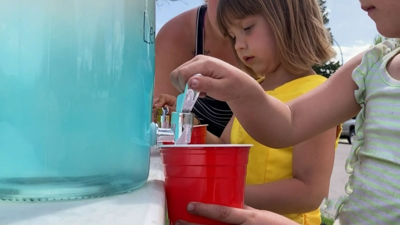 Lemonade stand raises money for displace seniors