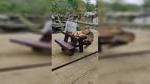 Chipmunk eats nuts at a tiny picnic table