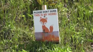 The incident sparked an idea among the firefighters, who decided to make signs and place them in areas where grass fires usually occur.