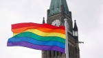 The pride flag flies in front of the Peace Tower on Parliament Hill after a flag raising ceremony in Ottawa on Wednesday, June 20, 2018. THE CANADIAN PRESS/ Patrick Doyle
