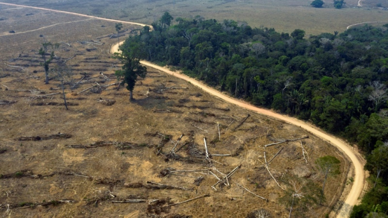 (FILE) Aerial file photo taken on August 24, 2019 of burnt areas of the Amazon rainforest, near Porto Velho, Rondonia state, Brazil. Almost all the deforestation in the Brazilian Amazon is illegal, a report found (AFP)