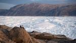 Student researchers sit on top of a rock overlooking the Helheim glacier in Greenland, on Aug. 16, 2019.  (Felipe Dana / AP)