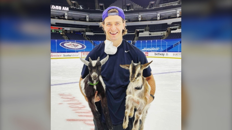 Mark Scheifele of the Winnipeg Jets poses for a photo with his pet goats during team practice on Saturday. (Image source: Instagram Farm fifty Five. @farmfiftyfive)