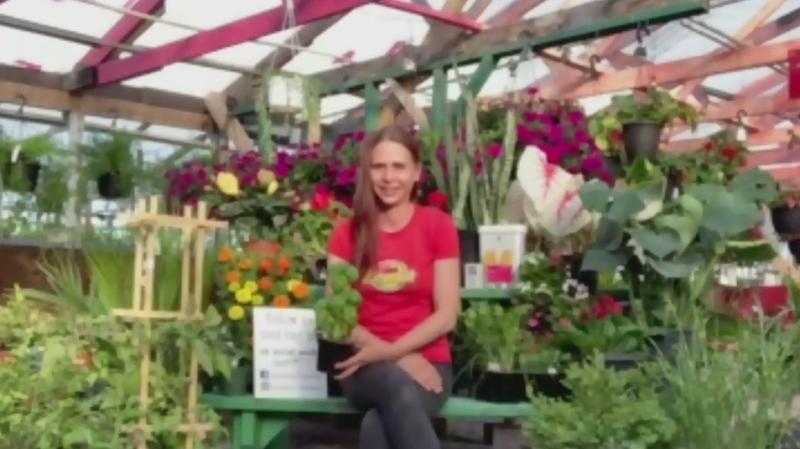 Curbside Pickup: Bergeron Garden Centre